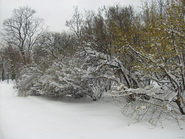 Március hava
