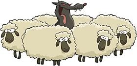 sheeps_hiding_wolf